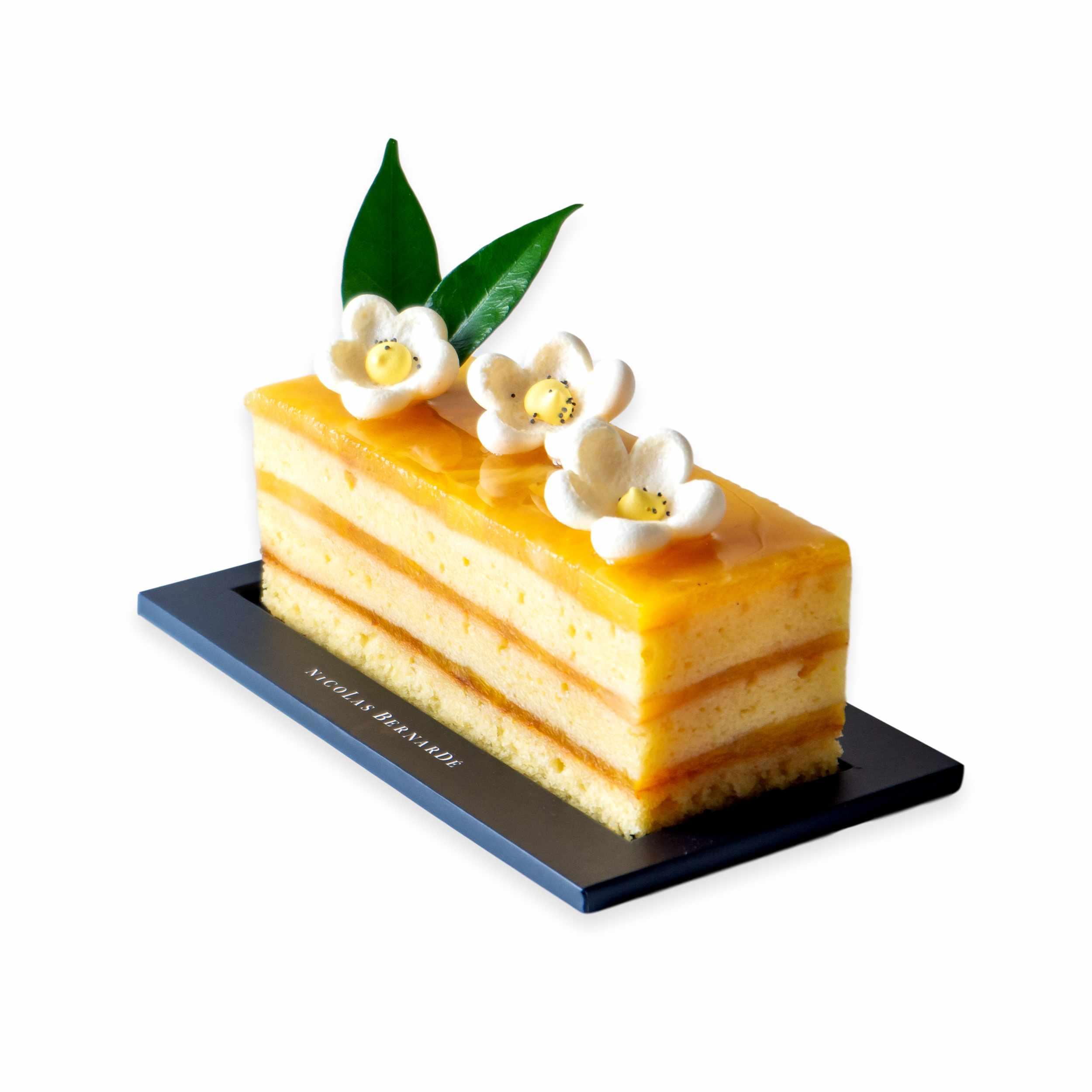 Cake-Mangue-Coco