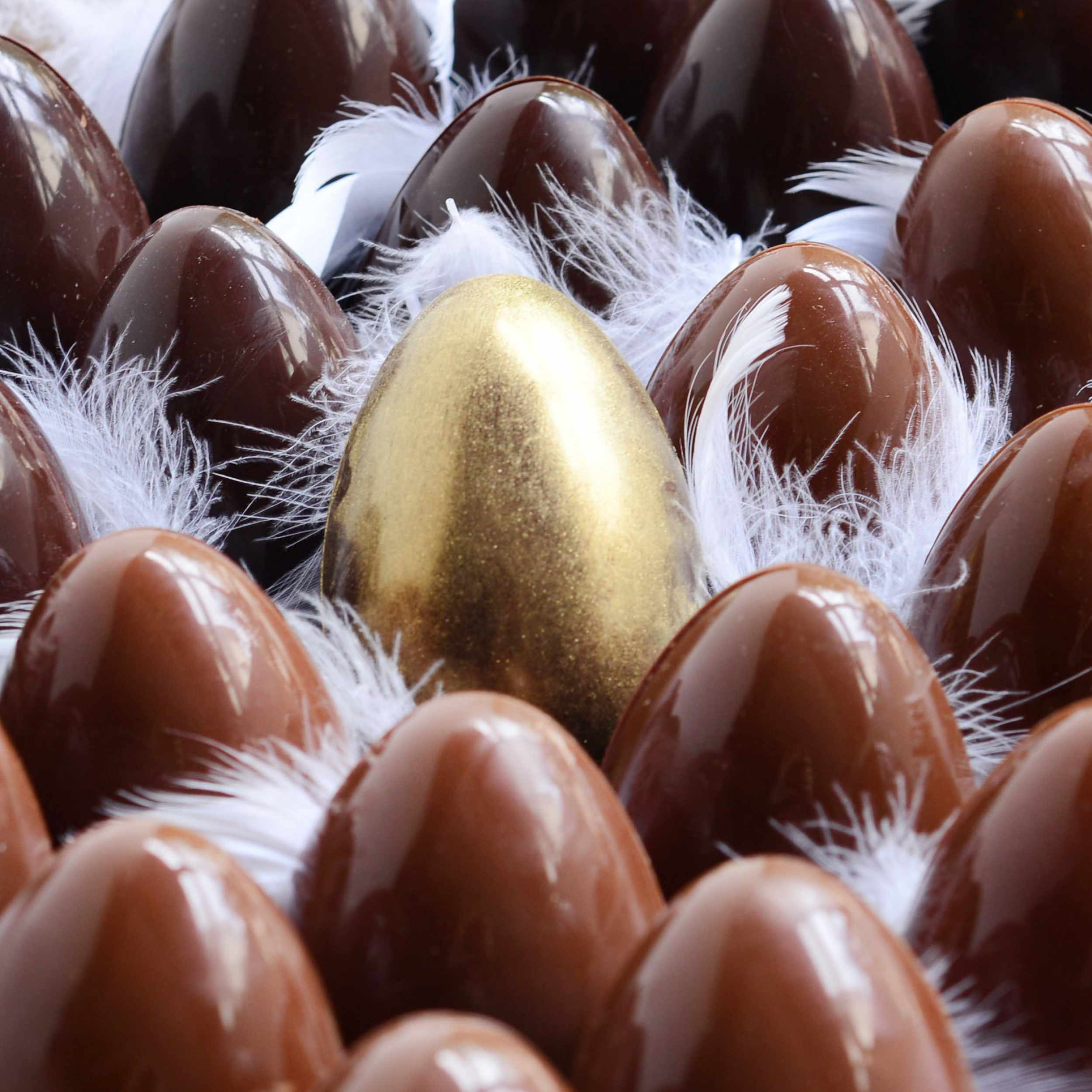 oeuf-chocolat.jpg
